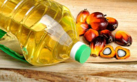 Palmöl gesundheitsschädlich
