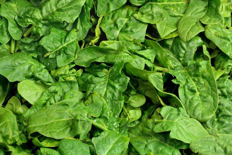 Augenlid zuckt Spinat essen