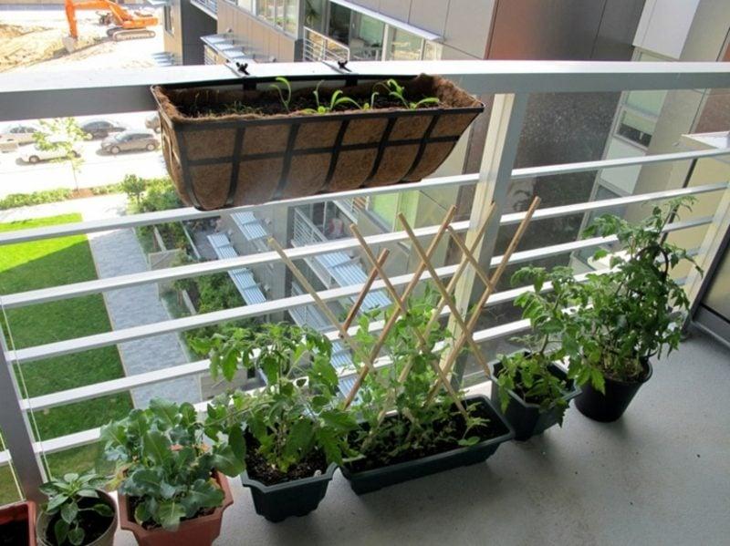 Gemüse anbauen Balkongarten Gestaltungstipps