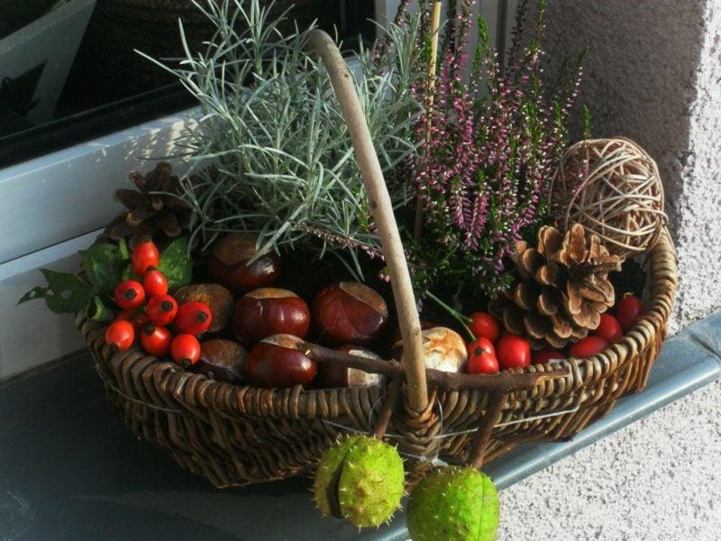 Herbstdeko für den Hauseingang Terrasse Korb Kastanien Tannenzapfen