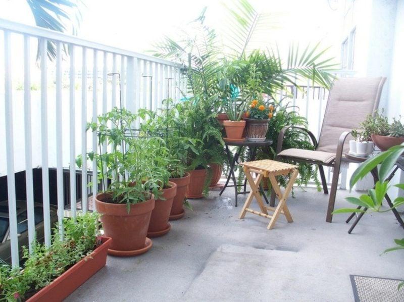 Gemüse anbauen Balkongarten selber gestalten