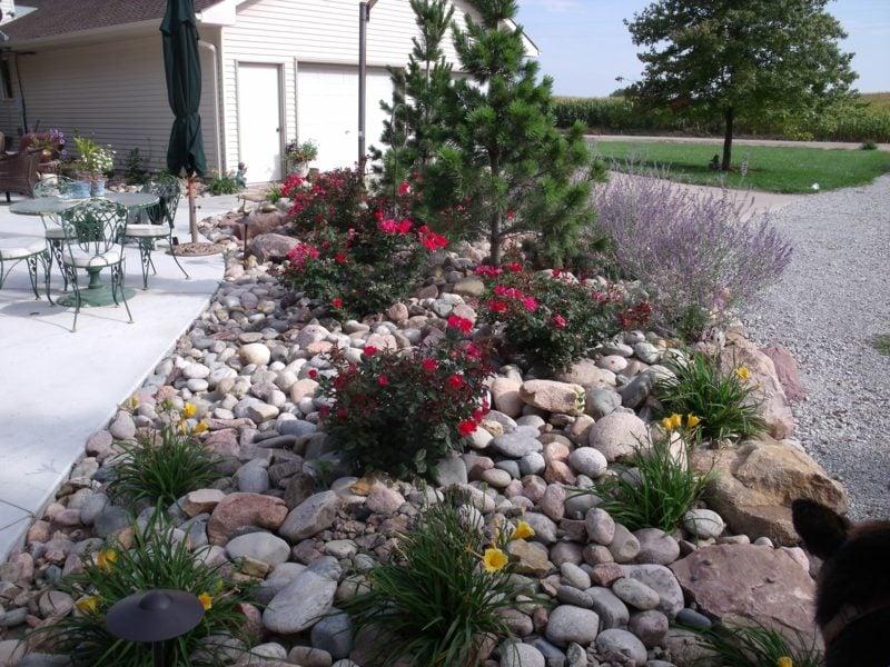 schöne gartengestaltung mit steinen und pflanzen