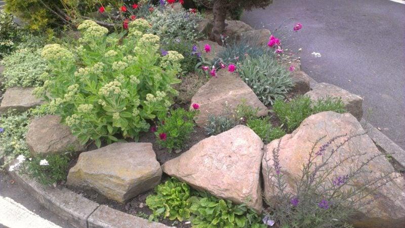pflanzen mit steinen kombination
