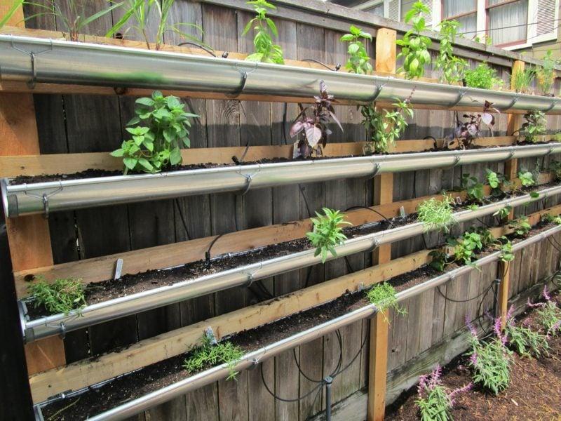 wandgarten bepflanzen