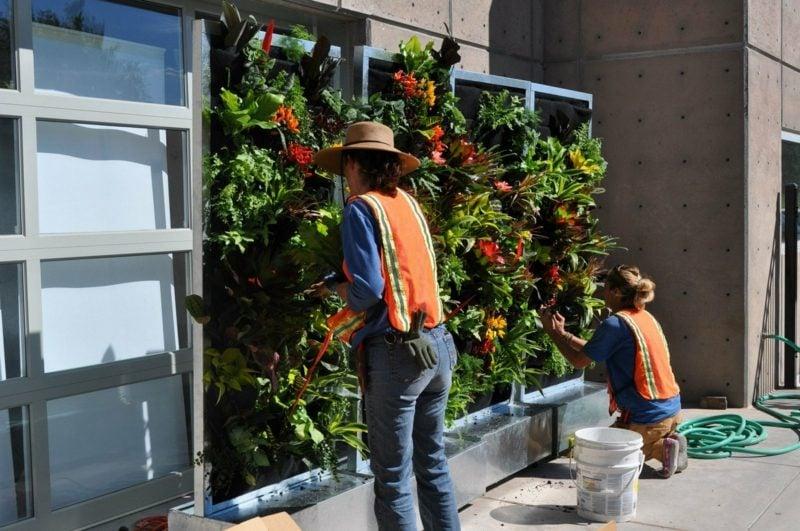 vertikaler garten pflanzen einsetzen