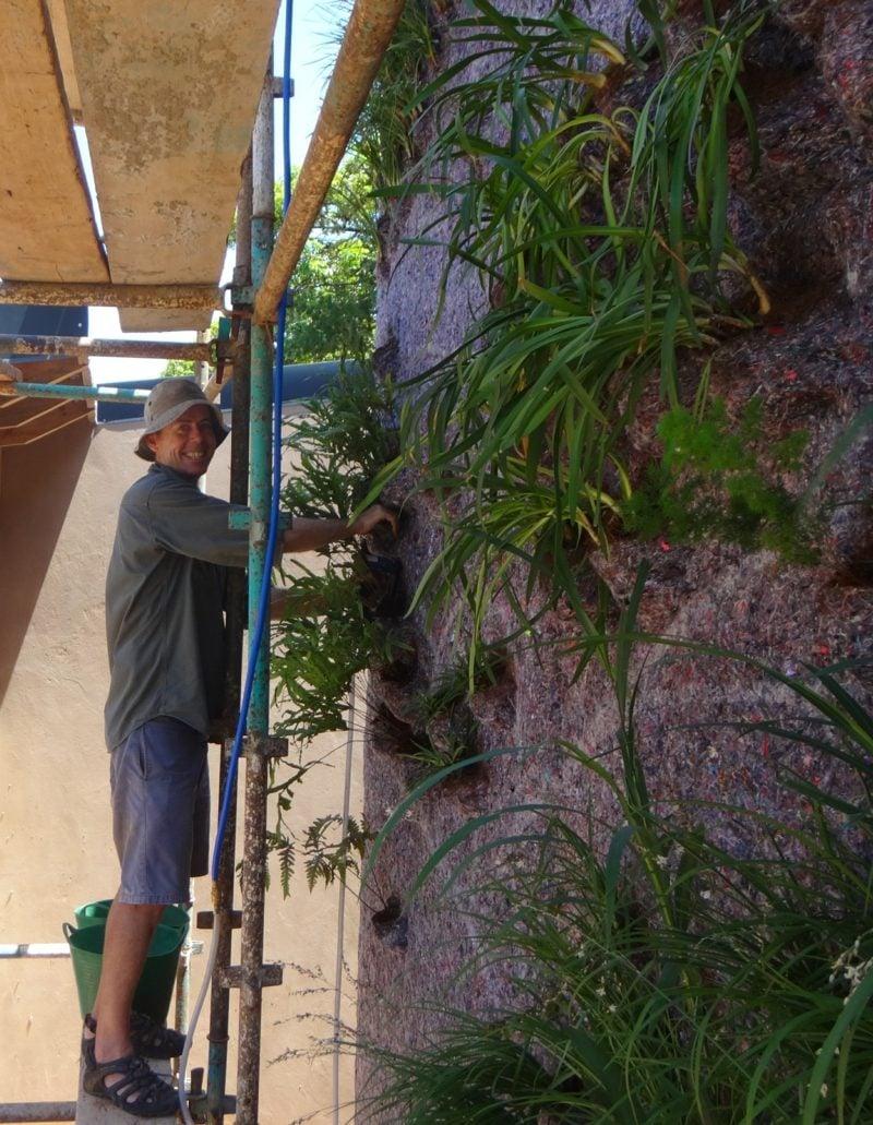 vertikaler garten pflanzen befestigen