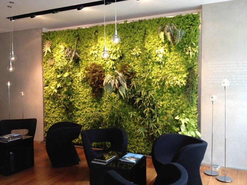 tropische pflanzenwand