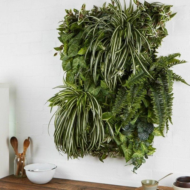 pflanzenbild vertikaler garten