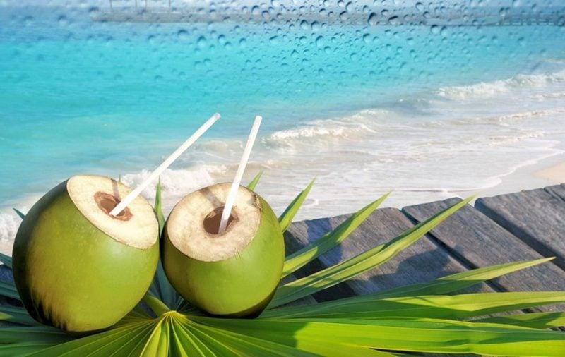 Wasser Eigenschaften Kokosnuss