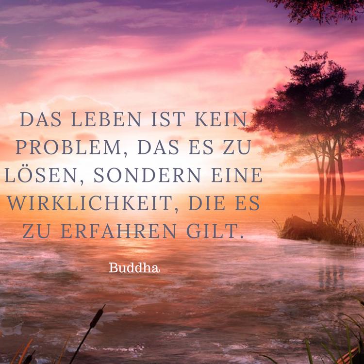 Zitate zum Nachdenken Buddha