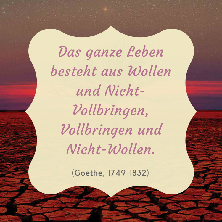 Image Result For Philosophie Zitate Buch