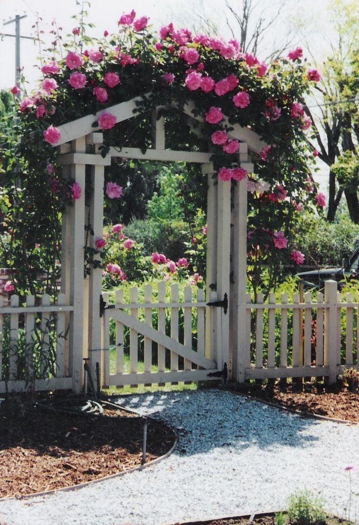 Gartenzäune Gartentor