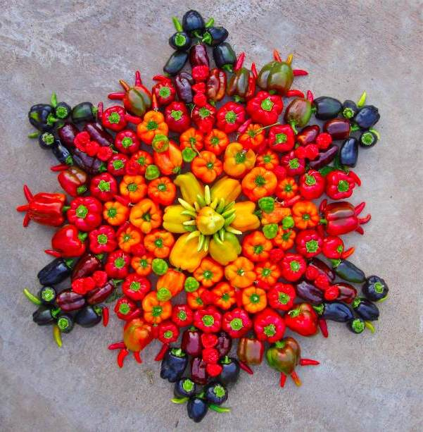Gemüse Mandalakunst