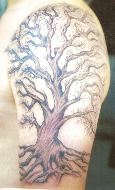 Ein Baum - Symbol der neue Lebenskraft und Wachstum