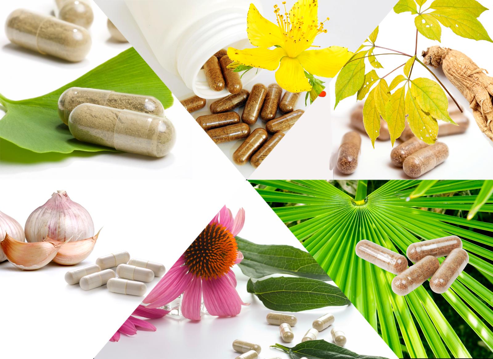 Nahrungsergänzungsmittel - stärken das Immun System und die Abwährkräfte