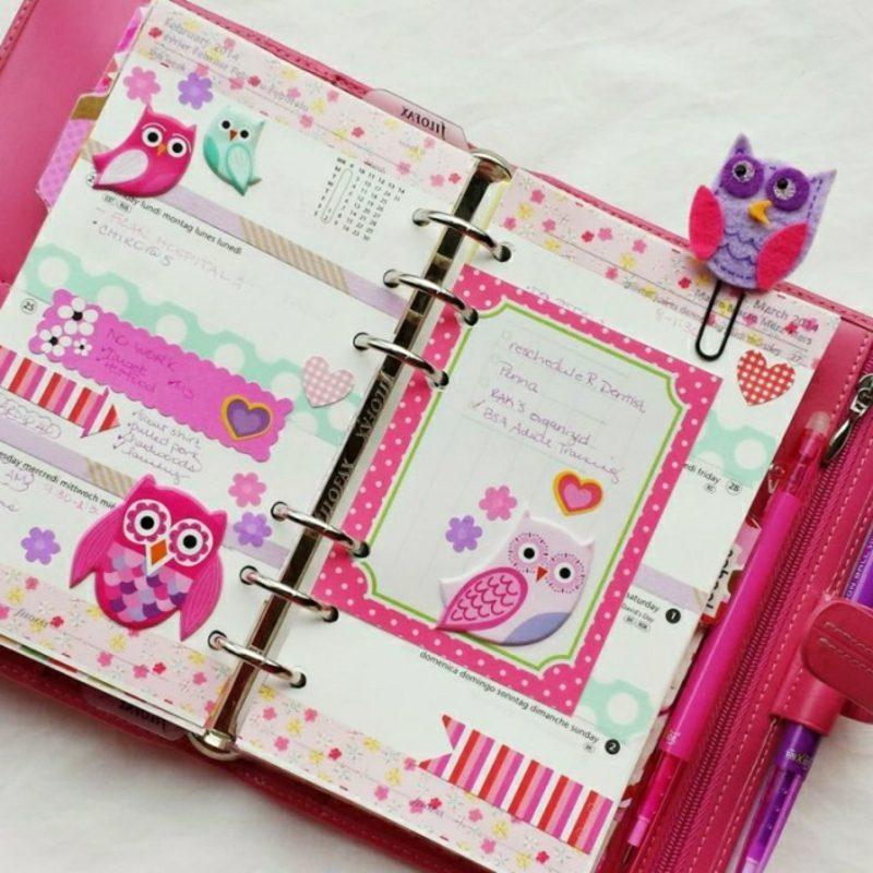 Filofaxing Zeitplaner rosa lila niedliche Eulen