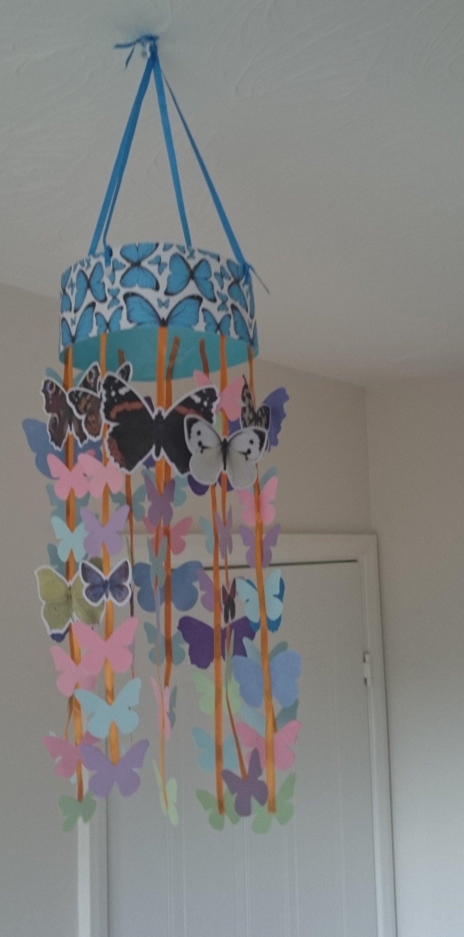 Schmetterlinge haben immer einen Platz Zuhause