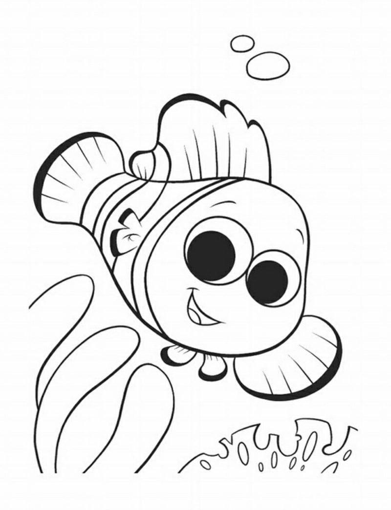 Ausmalbilder Tiere Fisch Nemo
