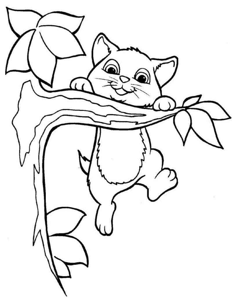 kostenlose Malvorlagen Katze Ast