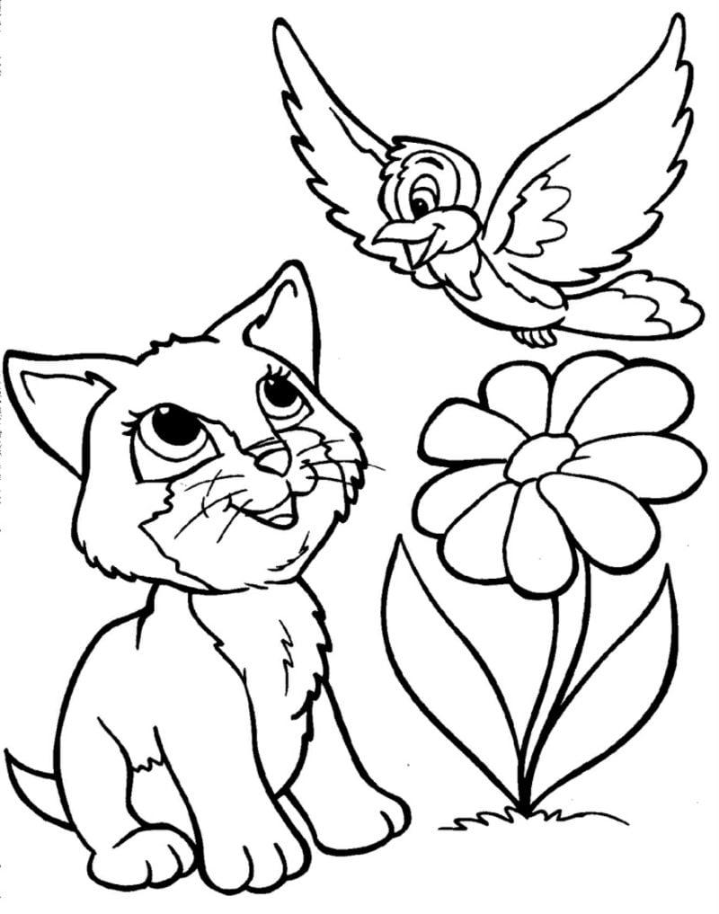 Ausmalbilder zum Drucken Katze Blume Vogel