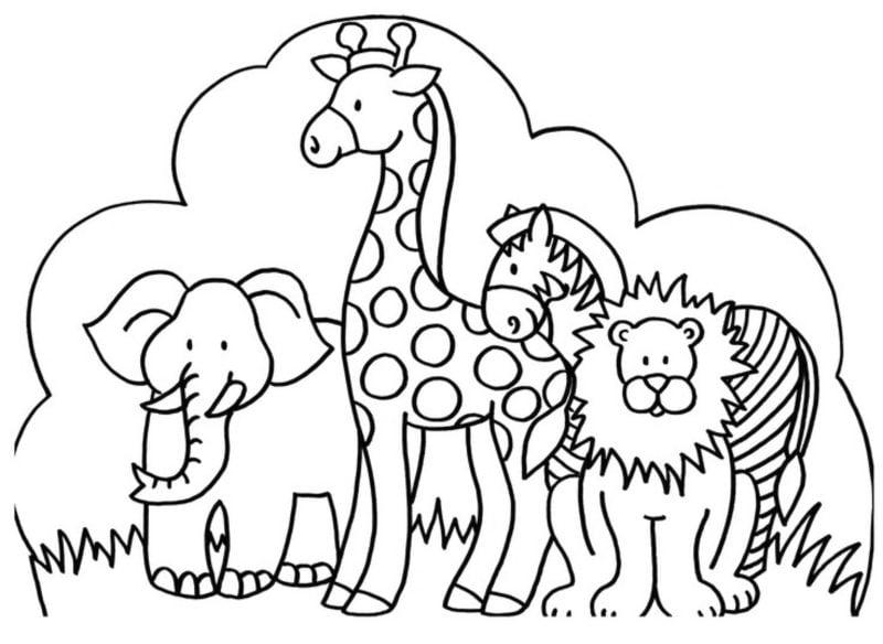 Ausmalbilder kostenlos ausdrucken Tiere Safari