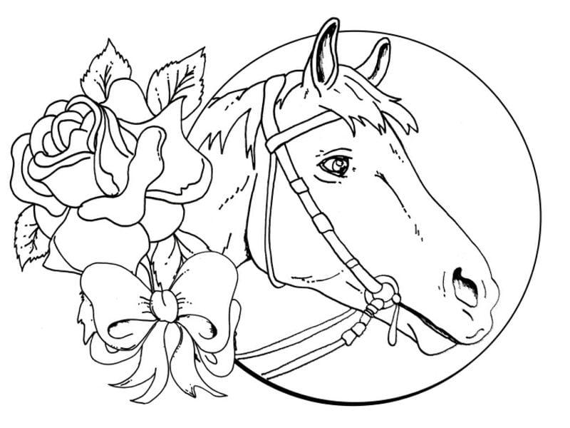 Bild zum Ausmalen Pferd Mond und Rosen