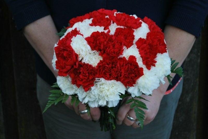 Blumenarten Pfingstrosen weiss und rot Valentinstag