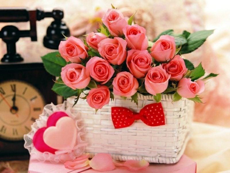 Blumenarten rosafarbene Rosen Valentinstag