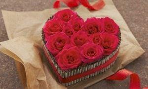 Blumenarten 14. Februar rote Rosen