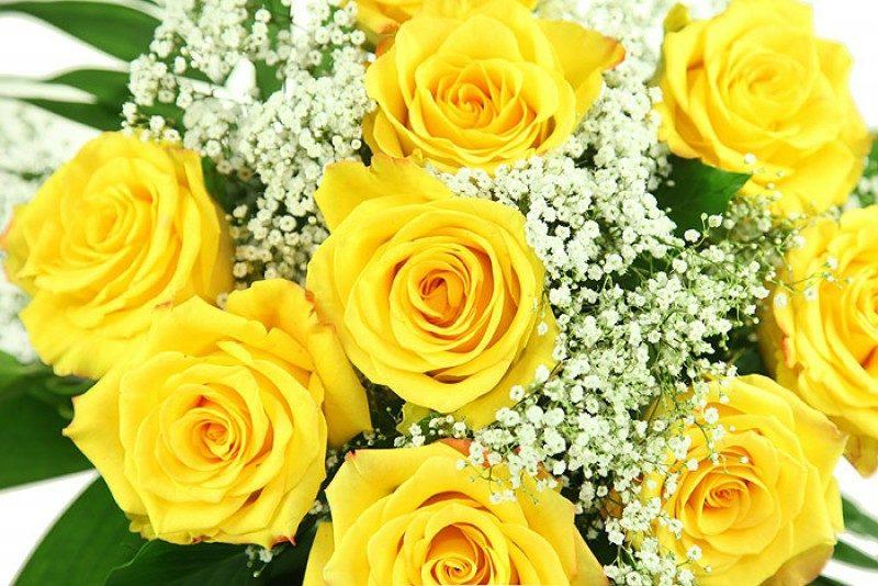 Blumenarten gelbe Rosen Tag der Verliebten