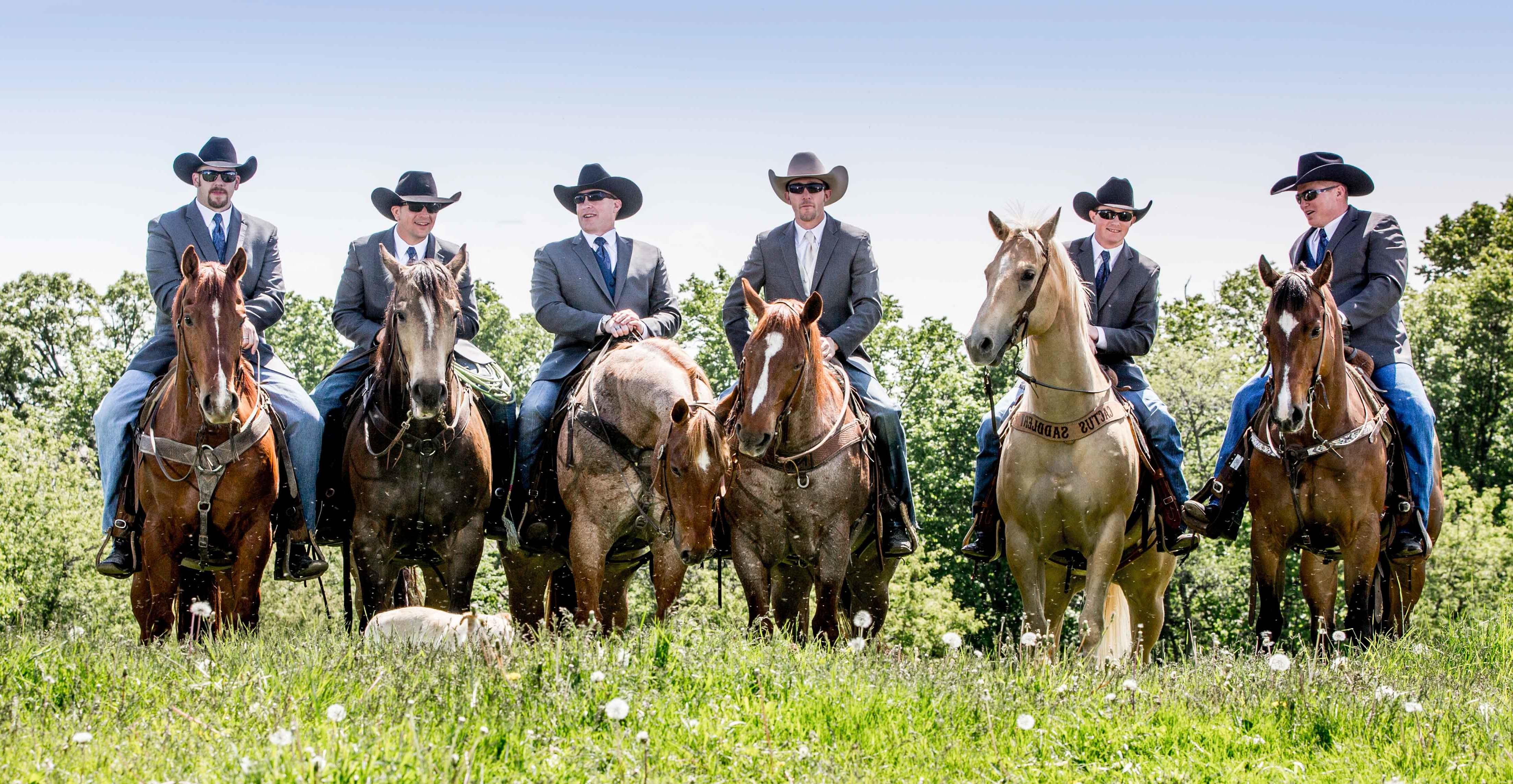 Bräutigam auf Pferde - schöne Pferdebilder