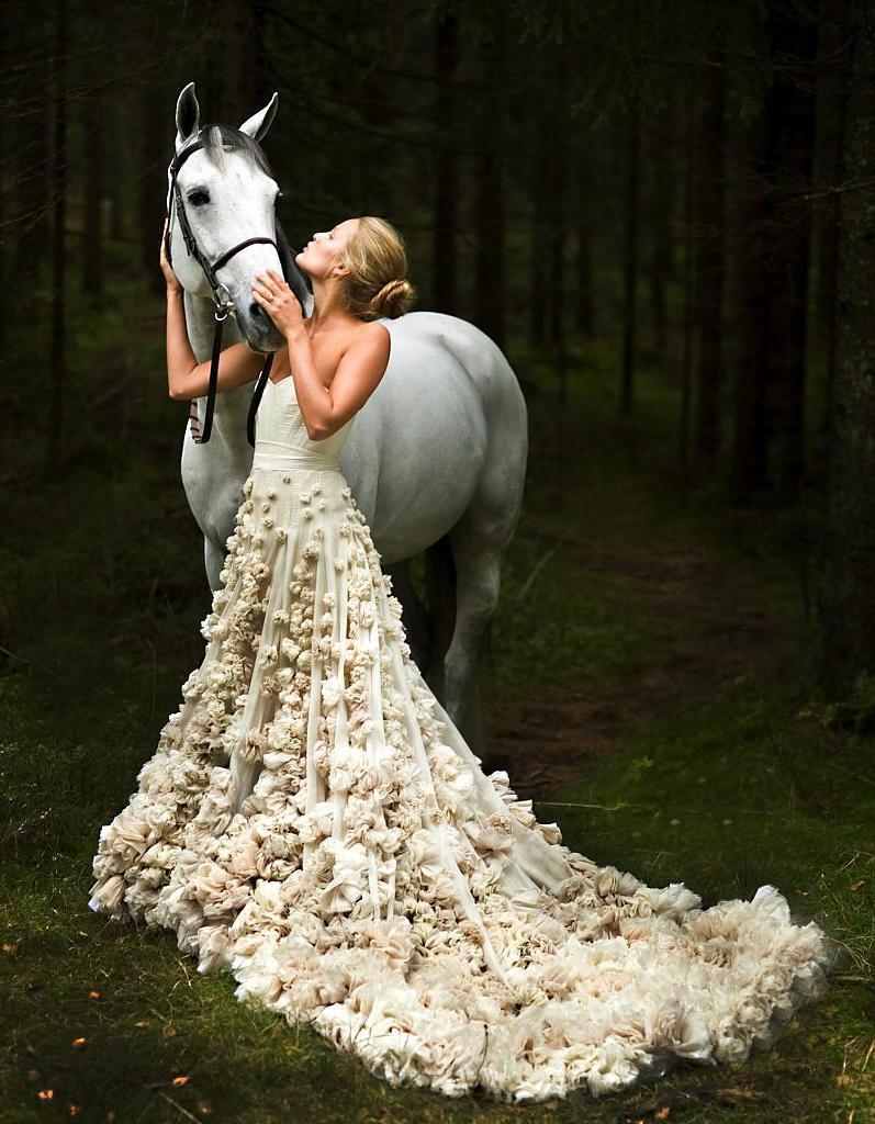 Pferde Bilder - Fotoshooting mit Pferd und Braut mit langem Brautkleit