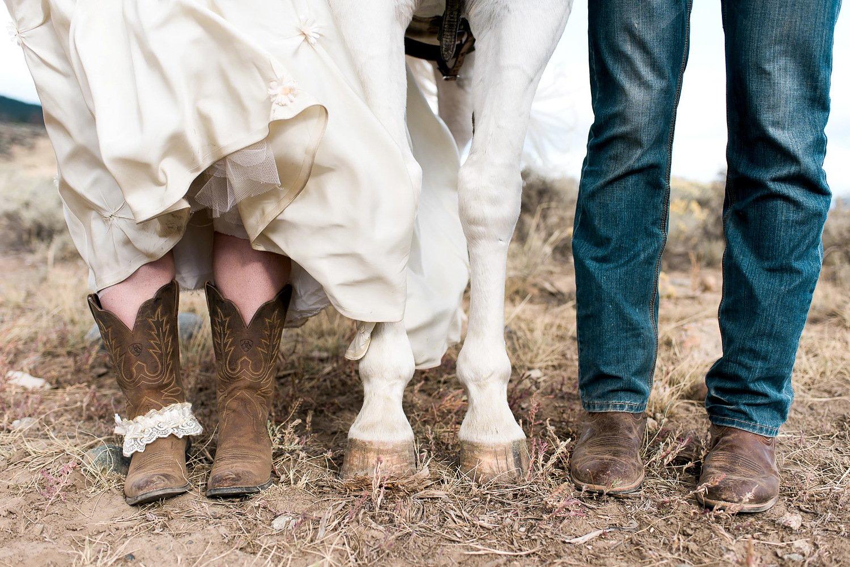 Lustige Pferde Bilder für eine lustige Hochzeit