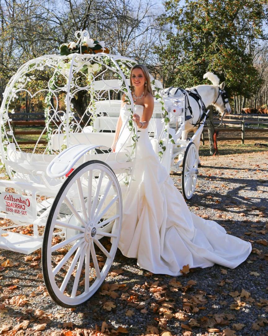 Hochzeitsfotos mit Pferd - wie in einem Märchen
