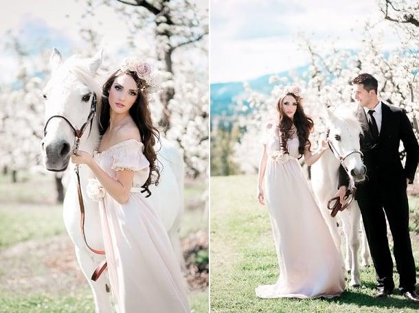 Pferdebild - Hochzeitsbilder mit einem weißen Pferd