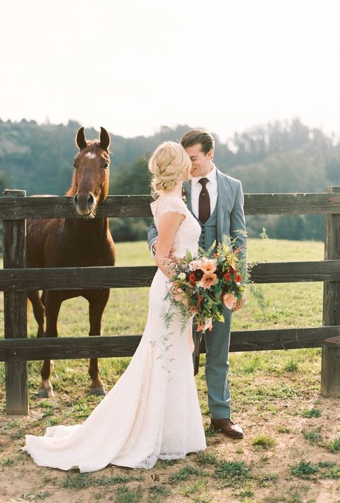 Pferde Bilder als Hintergrund bei Hochzeit Fotoshooting