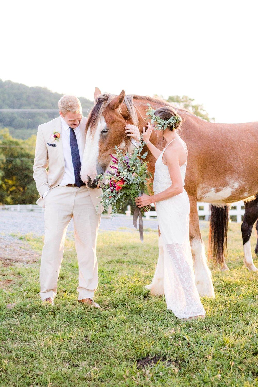 Hochzeit mit Pferde - schöne Pferdebilder