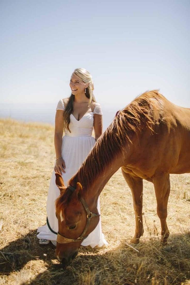 Pferdebilder - Idee für lustige Hochzeitsfotos