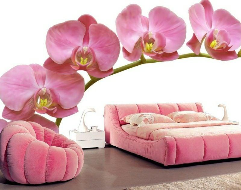 3D Fototapete rosafarbene Orchideen