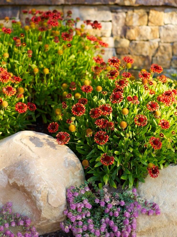 Garten anlegen pflegeleichter Garten