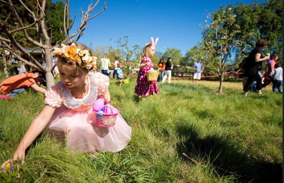 Tipps und Trick rund um die Ostereiersuche am Ostermontag