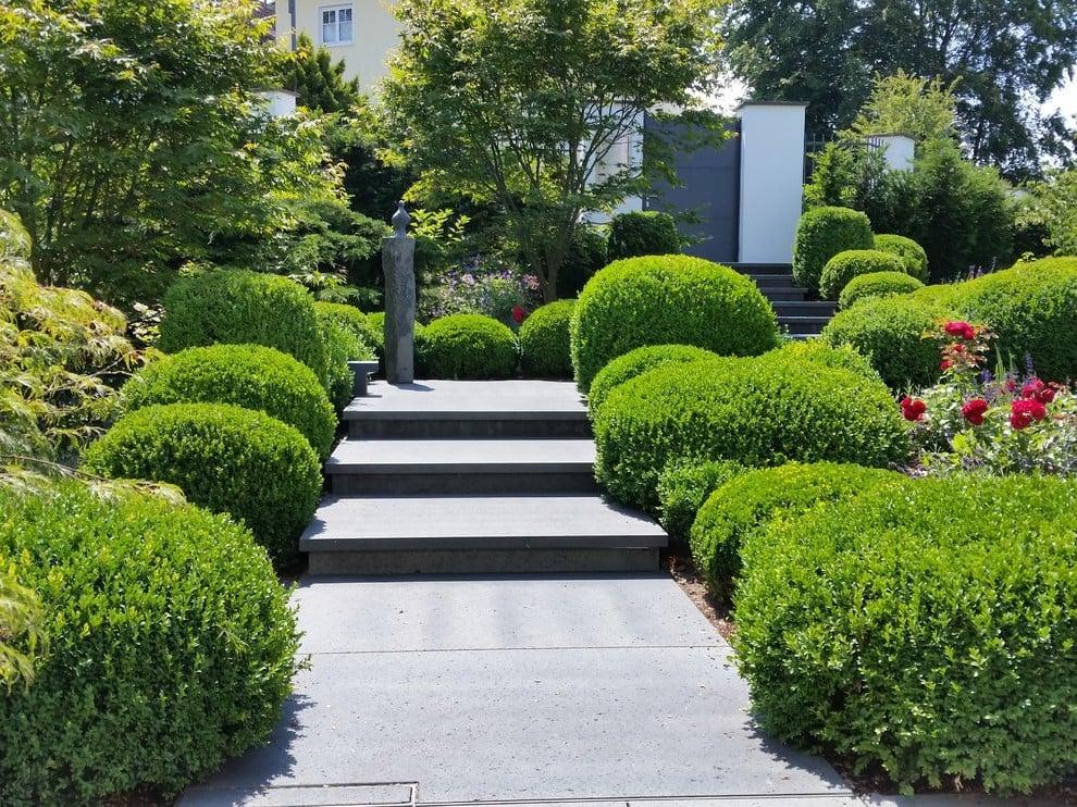 Tolle Ideen für Vorgartengestaltung mit Alleen und Büschen