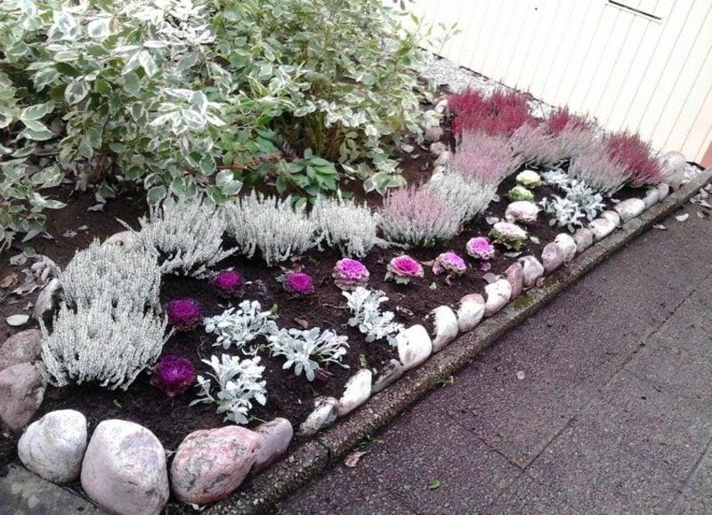 Vorgarten gestalten tolle Ideen Blumenbeeten