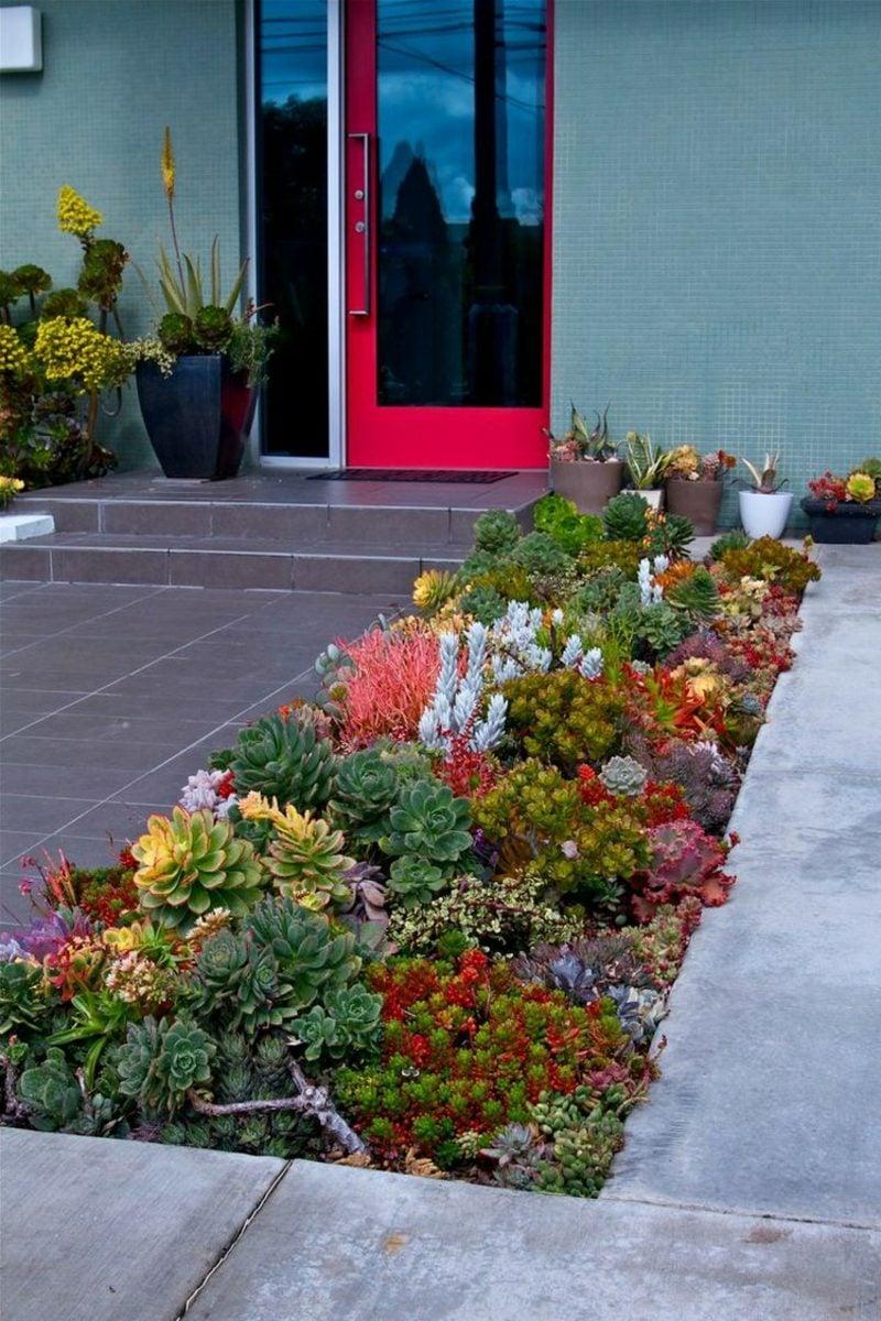Vorgarten gestalten Pflanzenvielfalt