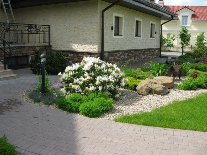 Vorgarten gestalten Rhododendron