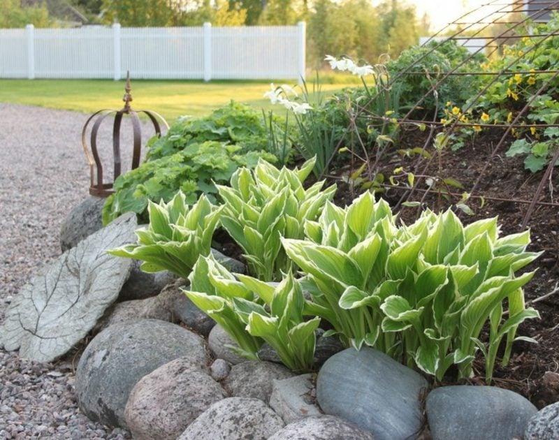 Vorgarten gestalten Steine Beetumrandung