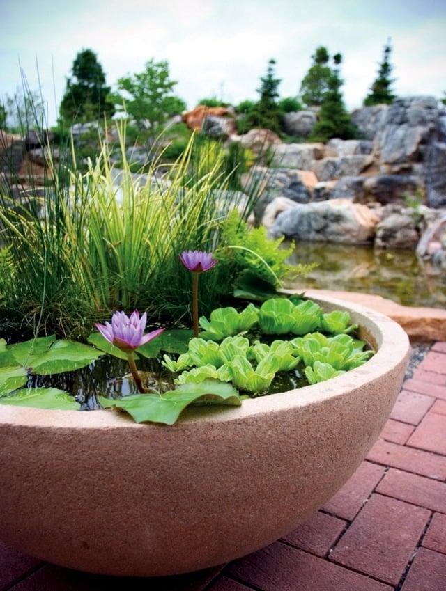 Balkongestaltung mit Mini-Teich: Welche Pflanzen passen dazu?