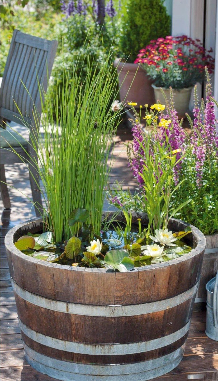 DIY Mini-Teich im Topf und noch viele tolle Gartenideen für wenig Geld finden Sie hier