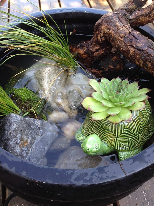 DIY Mini-Teich im Topf und noch viele tolle Ideen für Balkongestaltung finden Sie hier