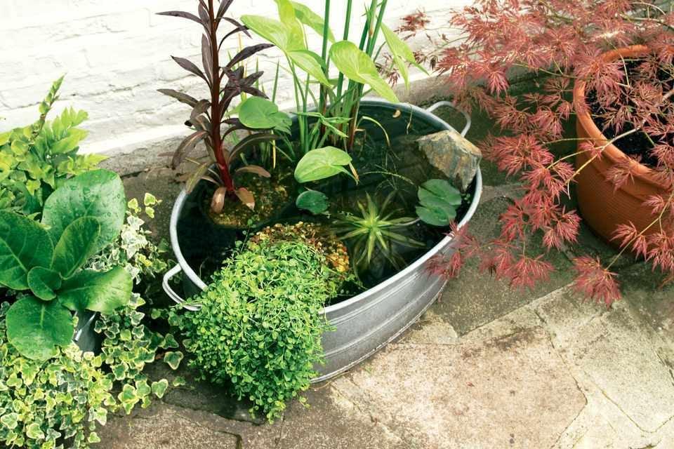 Mini Garten gestalten: Tipps und Trick für einen Garten auf den Balkon